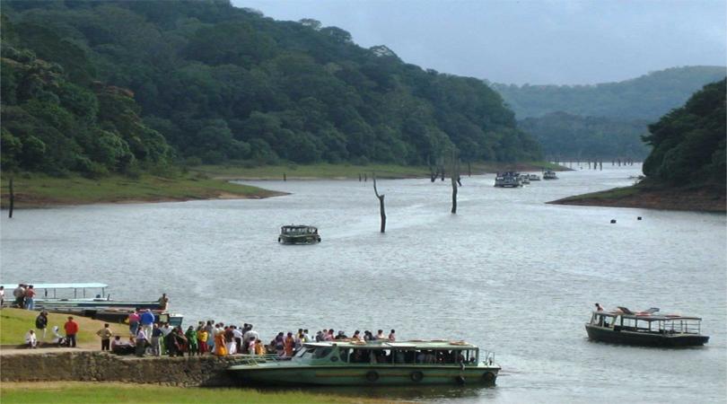 Bengal Swamps-West Bengal
