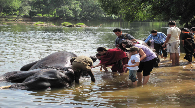 elephant camp coorg